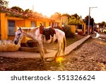 Horse In The Colonial Town...