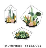 hand drawn contained tropical... | Shutterstock .eps vector #551337781
