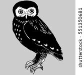 hand drawn doodle of the owl....   Shutterstock .eps vector #551350681
