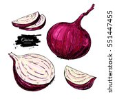 red onion hand drawn vector... | Shutterstock .eps vector #551447455