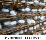 Silkworm Cocoons On A Wooden...