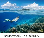 woman swims around a coral reef ... | Shutterstock . vector #551501377