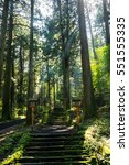 ninooka shrine entrance | Shutterstock . vector #551555335