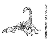detailed realistic scorpio...   Shutterstock .eps vector #551722669