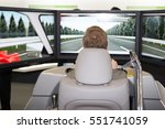 man in a car simulator to study ... | Shutterstock . vector #551741059
