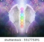 angel wings chakras darkness... | Shutterstock . vector #551775391