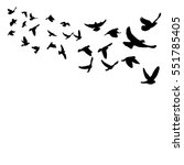 vector silhouette of a flock of ... | Shutterstock .eps vector #551785405