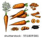 carrot hand drawn vector... | Shutterstock .eps vector #551809381