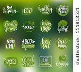 vector eco  organic  bio logos... | Shutterstock .eps vector #551813521