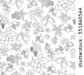hand drawn seamless pattern... | Shutterstock .eps vector #551860564
