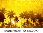 palm trees silhouettes on... | Shutterstock . vector #551862097