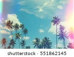 Small photo of Tropical palm trees at sunny summer day, vintage film stylized with film light leaks