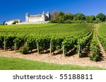 Chateau De Rully With Vineyard...