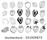 set of handcrafted strawberry... | Shutterstock .eps vector #551909875