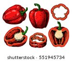 pepper hand drawn vector set.... | Shutterstock .eps vector #551945734