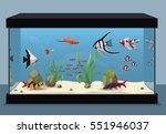freshwater aquarium... | Shutterstock .eps vector #551946037