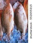 Small photo of Fresh Snapper or Mangrove Jack fish on display at market.
