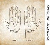 palmistry or chiromancy chart... | Shutterstock .eps vector #552073609