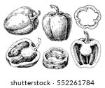 pepper hand drawn vector set.... | Shutterstock .eps vector #552261784