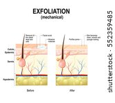 exfoliation or peeling is a... | Shutterstock .eps vector #552359485