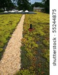 Green Roof Top Covered With...