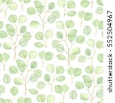 seamless greenery background... | Shutterstock .eps vector #552504967