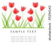 tulip flowers. design for...