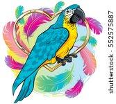 vector illustration of a bright ... | Shutterstock .eps vector #552575887