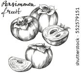 fruit persimmon set hand drawn... | Shutterstock .eps vector #552579151