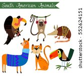 sourth america animals vector... | Shutterstock .eps vector #552624151