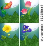different types of flowers on... | Shutterstock .eps vector #552658669