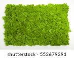 Reindeer Moss Wall  Green Wall...