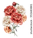 red peonies. watercolor flowers.... | Shutterstock . vector #552683881