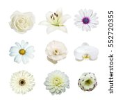 collection of various white...
