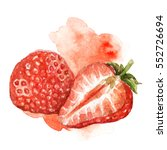 hand painted watercolor... | Shutterstock . vector #552726694