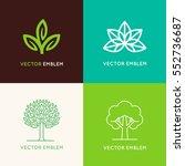vector set of logo design... | Shutterstock .eps vector #552736687
