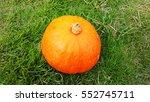 potrait of the orange pumkin... | Shutterstock . vector #552745711