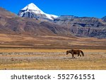 Small photo of View of sacred mount Kailash from the bottom with plain and lonely horse.