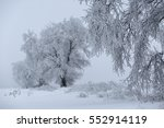 winter forest in snow. | Shutterstock . vector #552914119