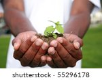 a green plant safe in the palms of a persons hands, represents earth friendly concepts - stock photo