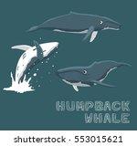 Humpback Whale Cartoon Vector...