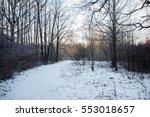 park | Shutterstock . vector #553018657