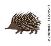 echidna. flat cartoon vector... | Shutterstock .eps vector #553049245
