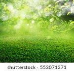 spring grass background | Shutterstock . vector #553071271