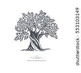 Hand Drawn Olive Tree. Vector...
