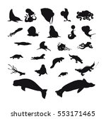 Sea Animal Silhouette Set
