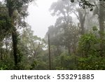 Cloud Forest In National Park...
