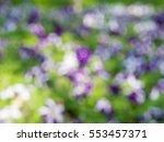 Bokeh Flower Background