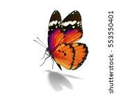 beautiful orange monarch... | Shutterstock . vector #553550401