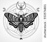 decorative moth dead head.... | Shutterstock .eps vector #553576801